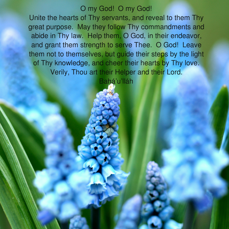 O My God! O My God! Unite The Hearts Prayer